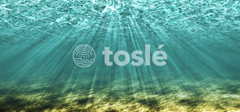 tosle トスレ